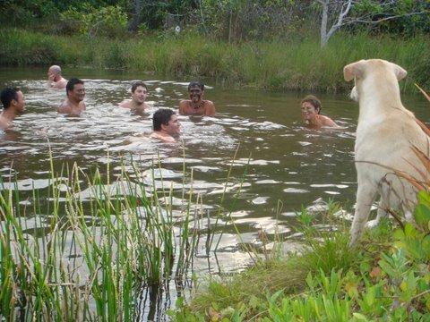 Banho no lago vigiados de perto pela cachorrinha