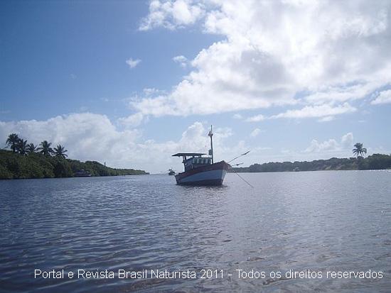 Imponente rio Ipiranga correndo em direção ao mar