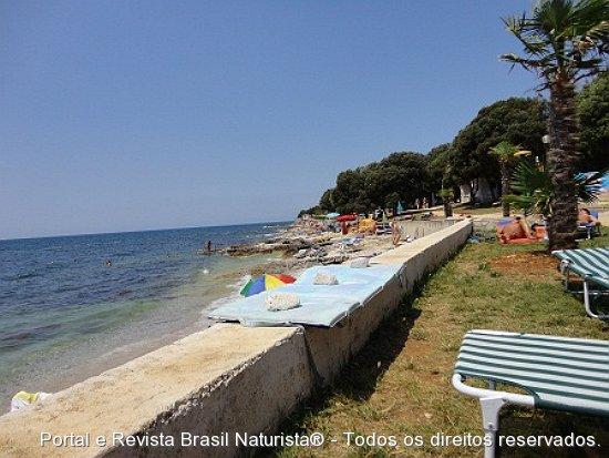 A murada que separa a floresta da praia