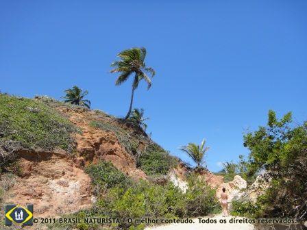 Locais com a natureza intocável para se caminhar nu em Tambaba