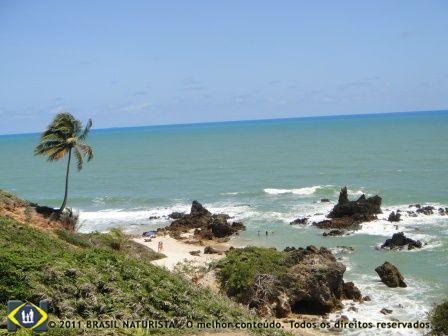 Visto assim do alto a praia de Tambaba é de tirar o folêgo