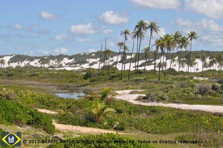 O rio de cor ferruginosa que circunda as dunas e o mar.