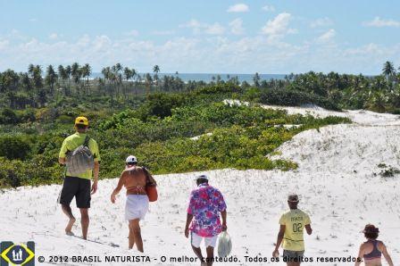 Uma caminhada na trilha das Dunas Brancas de Massarandupió/Bahia para manter o corpo em forma