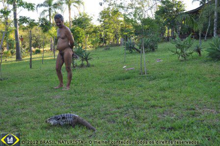 O lagarto acompanhado em seu passeio pelo bosque da Colina...