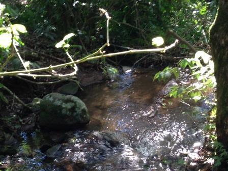 O desafio é a preservação do meio ambiente...