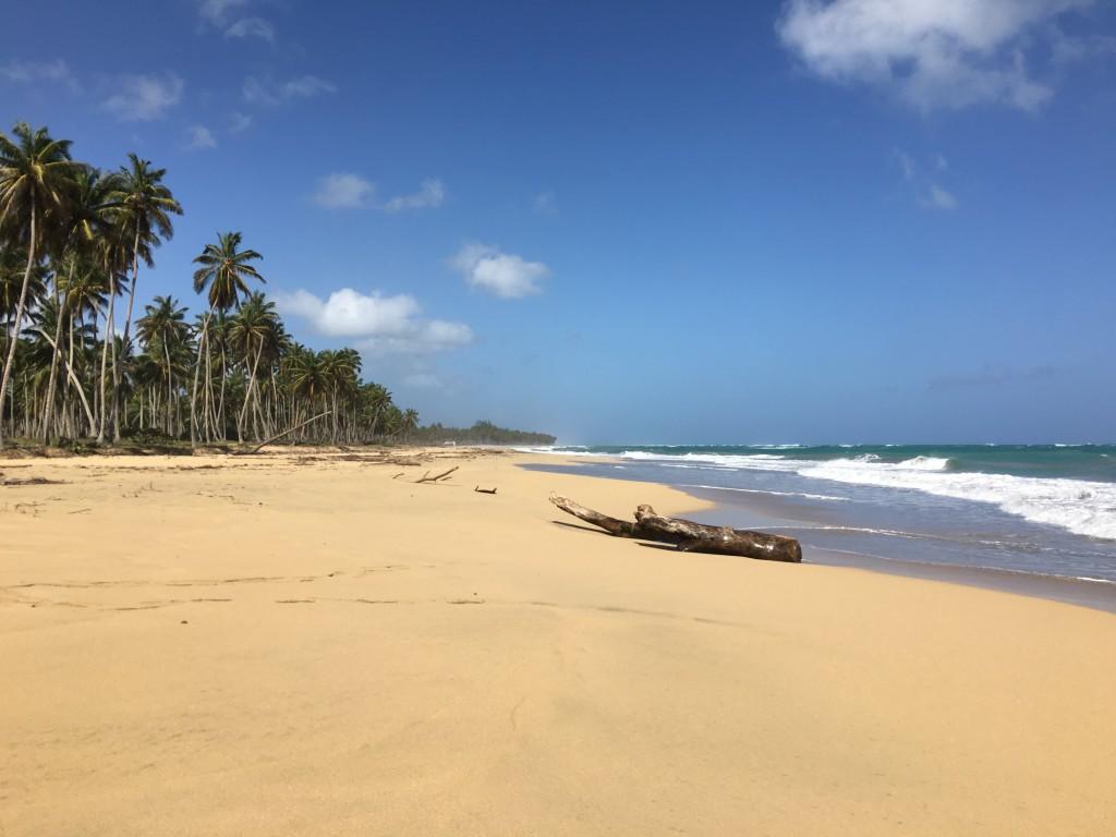 Enfim na praia deserta.